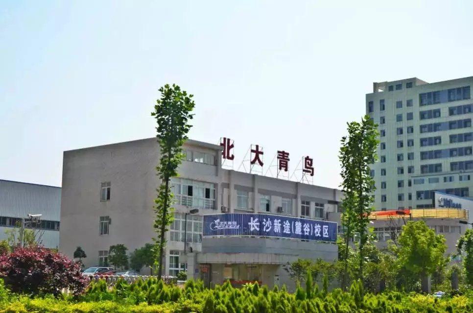北大青鸟长沙新途麓谷学院