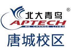北京网络营销师培训2