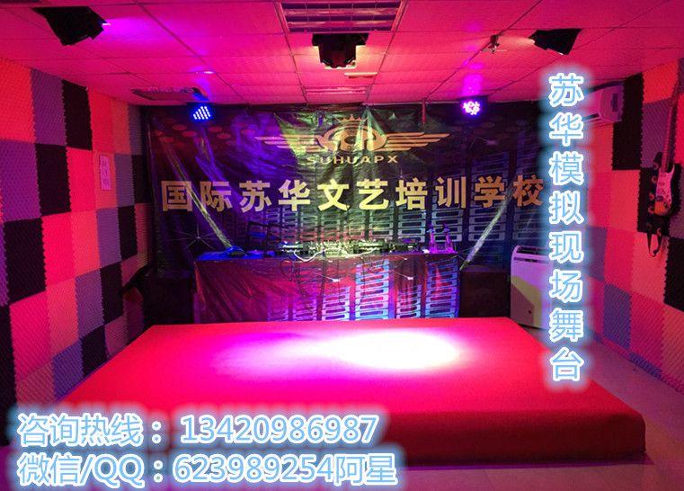 深圳市苏华文艺培训有限公司